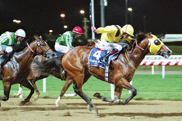 The Dubai Cup