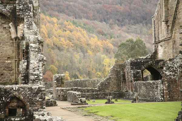 Ruins of Tintern Abbey