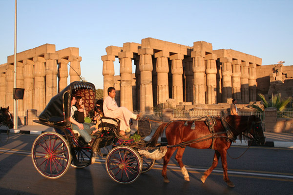 Horse carriage at Luxor